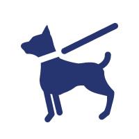 adiestramiento de perros en Vigo