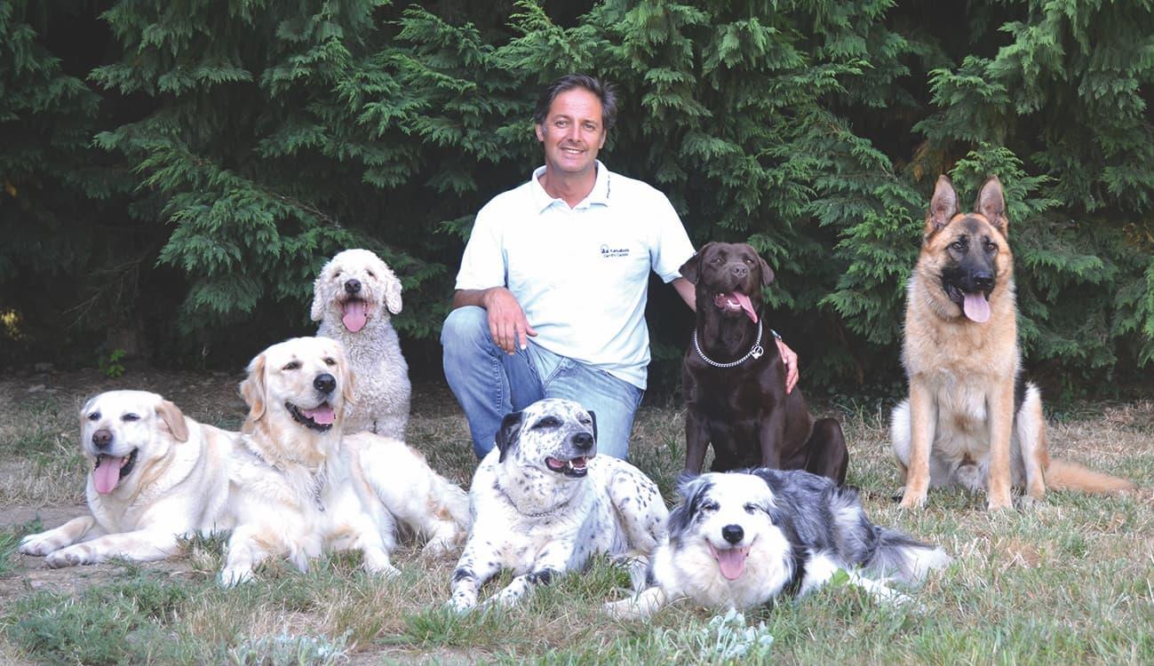 curso de diestramiento de base y educación canina